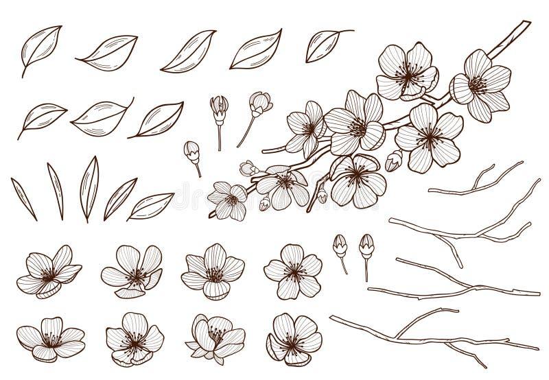 Mandelblomningar räcker den utdragna uppsättningen Vårblommasidor, knoppar och filialer samlade Sakura körsbär, äppleträd, plommo royaltyfri illustrationer