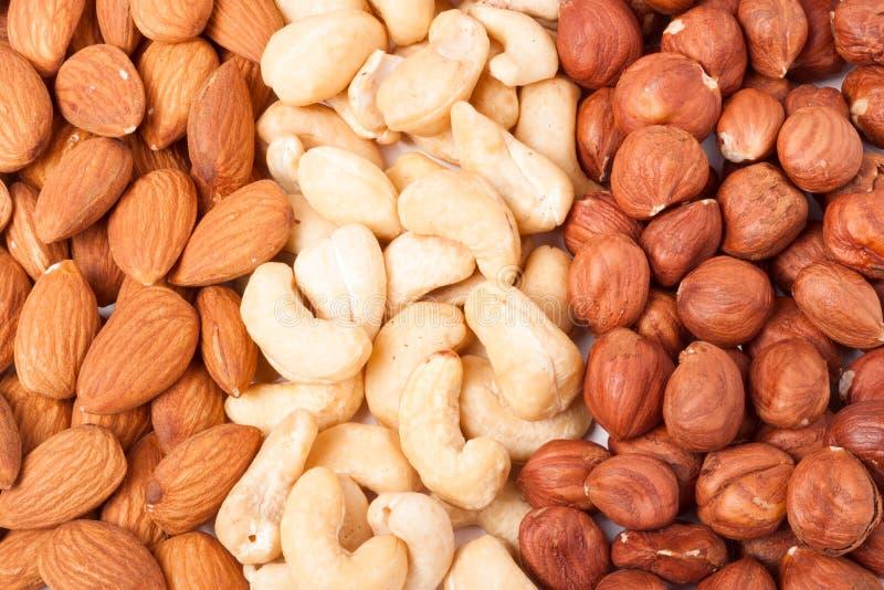 Mandelkasjuer och hasselnötter som skalas som bakgrund royaltyfri foto