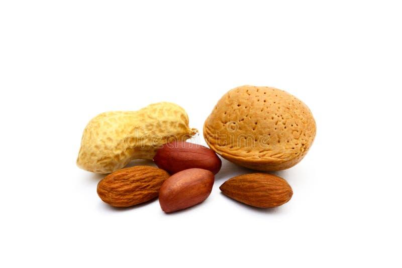 Mandeln und Erdnüsse lizenzfreie stockfotografie