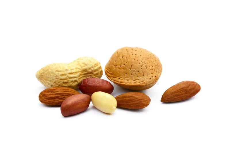 Mandeln und Erdnüsse lizenzfreies stockbild