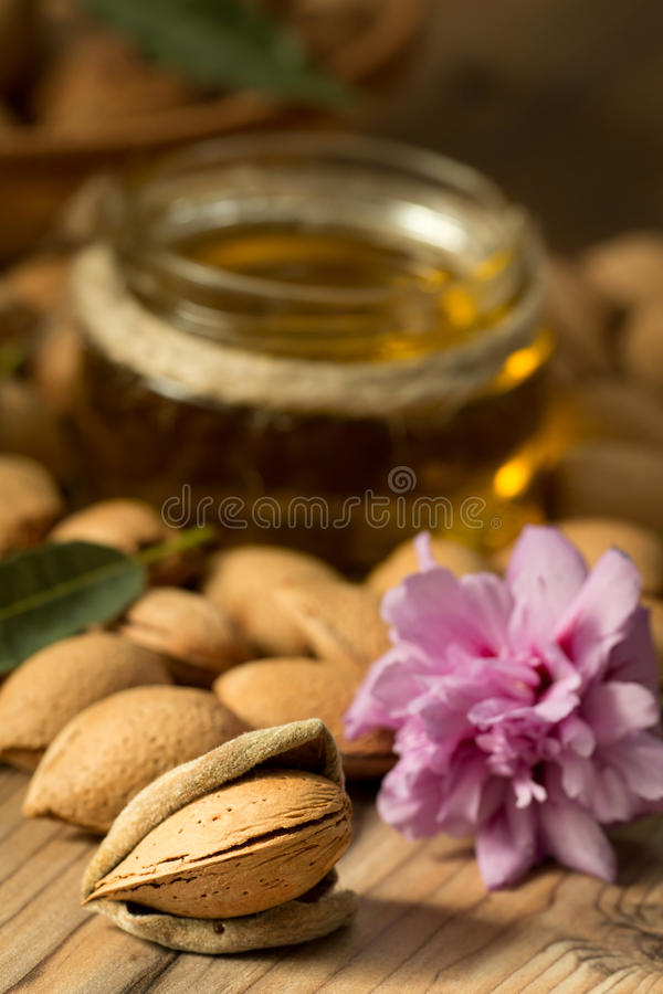 Mandelolja och mandlar royaltyfria foton