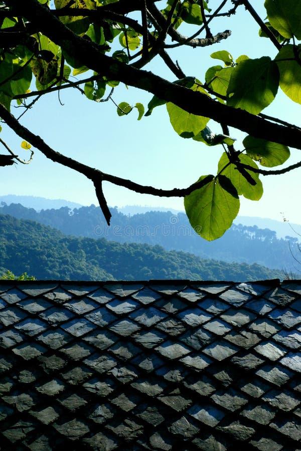 Mandelsidor över taket royaltyfria foton