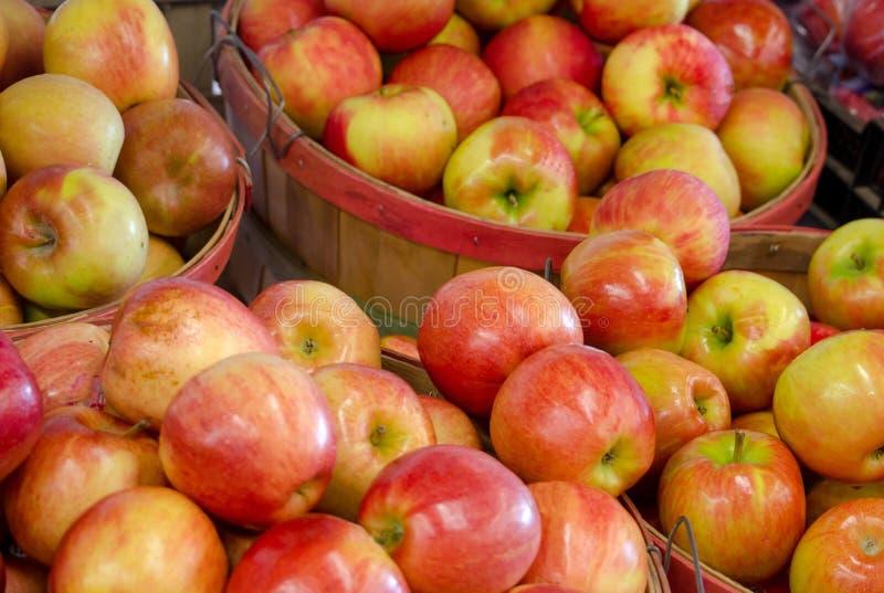 Manden van de appelen van Michigan voor verkoop royalty-vrije stock afbeeldingen