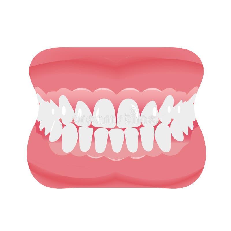 Mandibola con stile piano dell'icona dei denti Apra la bocca, protesi dentarie Odontoiatria, concetto della medicina Isolato su p illustrazione vettoriale