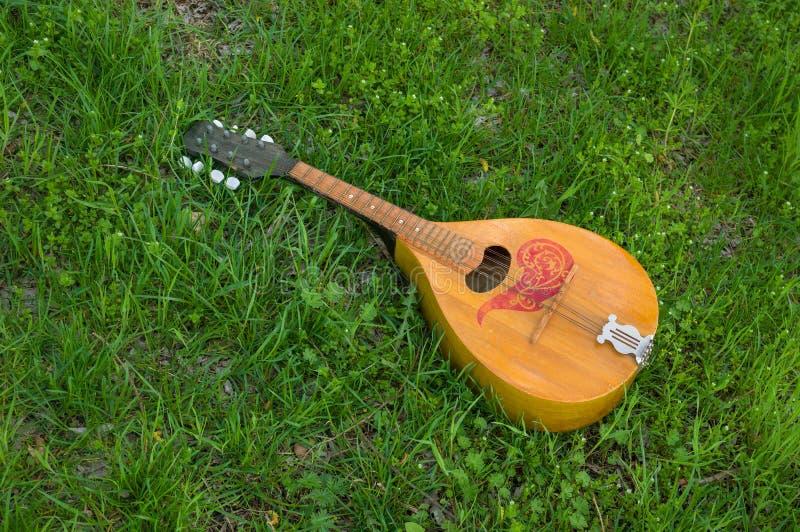 Mandolin lost in spring grass. Needless mandolin lost in spring grass royalty free stock images