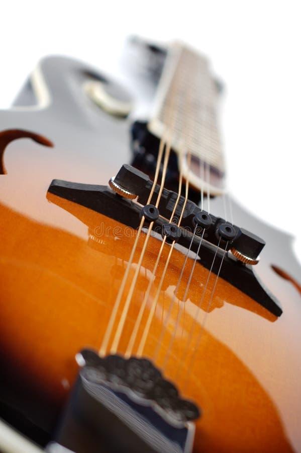 Mandolin on White. Close up of a mandolin on a white background stock photo