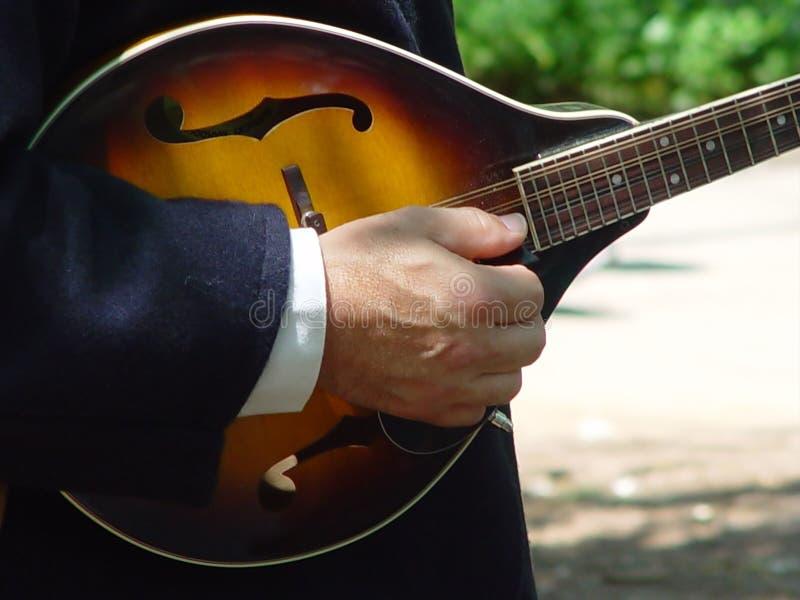 Download Mandoline stock image. Image of neck, guitar, instument, mandoline - 7833