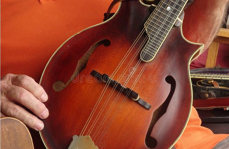 Mandoline-Weinlese stockbild