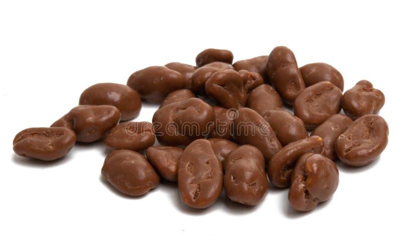 mandorla in cioccolato isolato immagine stock