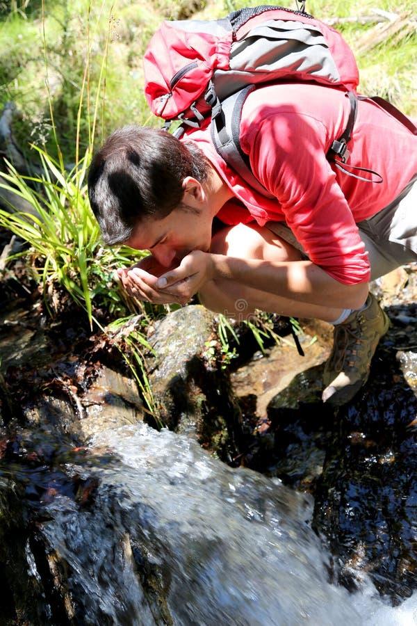 Mandricksvatten från bäckkälla arkivfoto