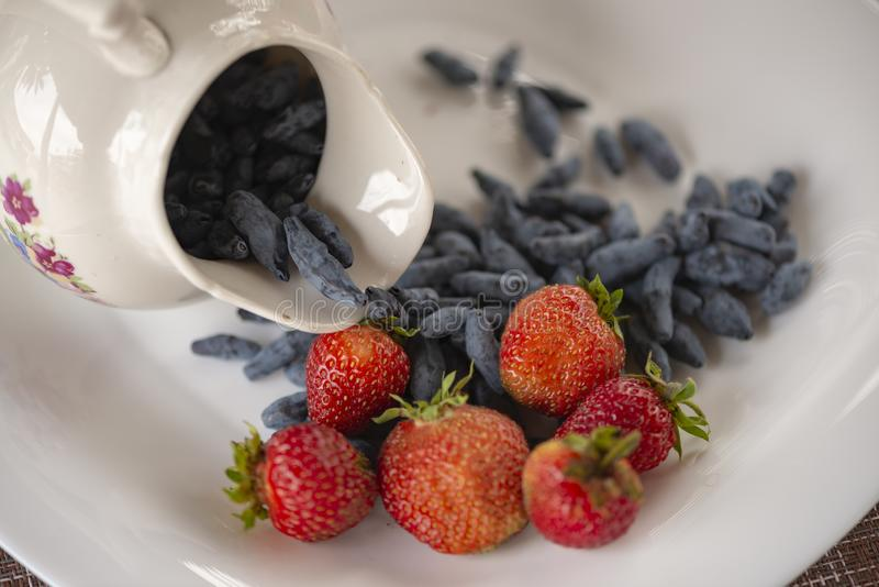 Mandril do ver?o O café da manhã da luz de Utrenny das bagas Uma madressilva com um morango silvestre e um creme de leite foto de stock