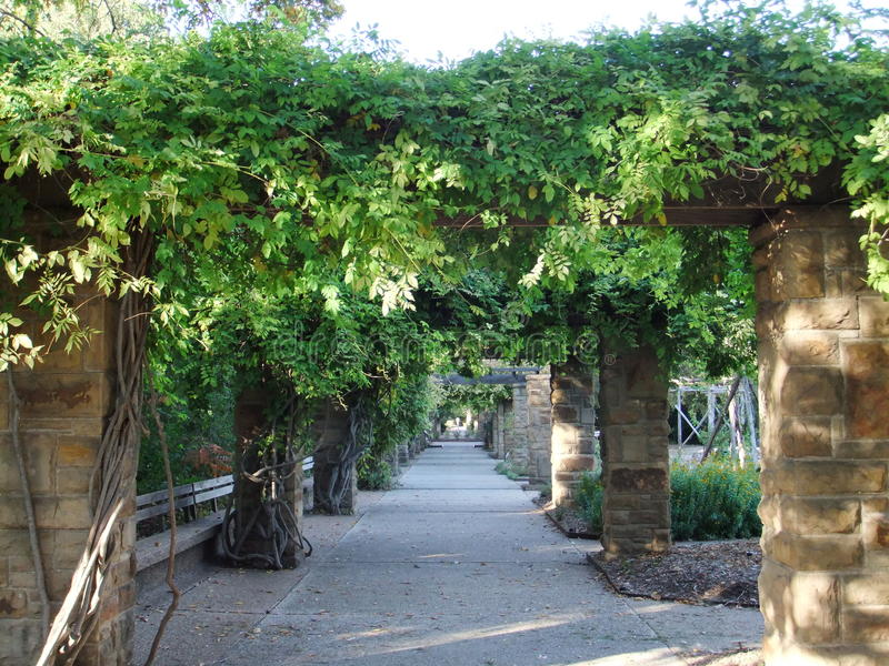 Mandris do jardim botânico foto de stock