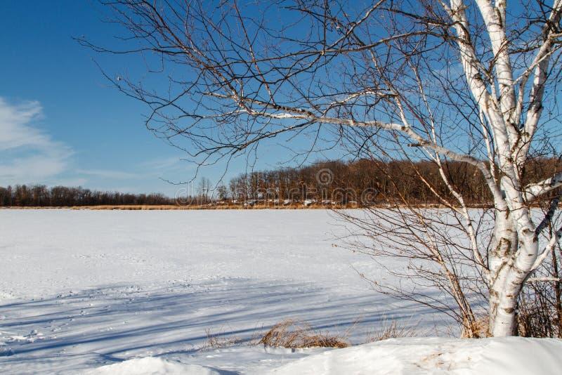 Mandy jezioro w zimie zdjęcia stock