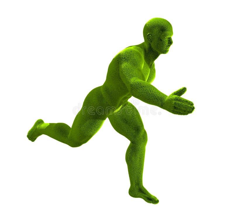 Maneignung-Graslack-läufer lizenzfreie abbildung