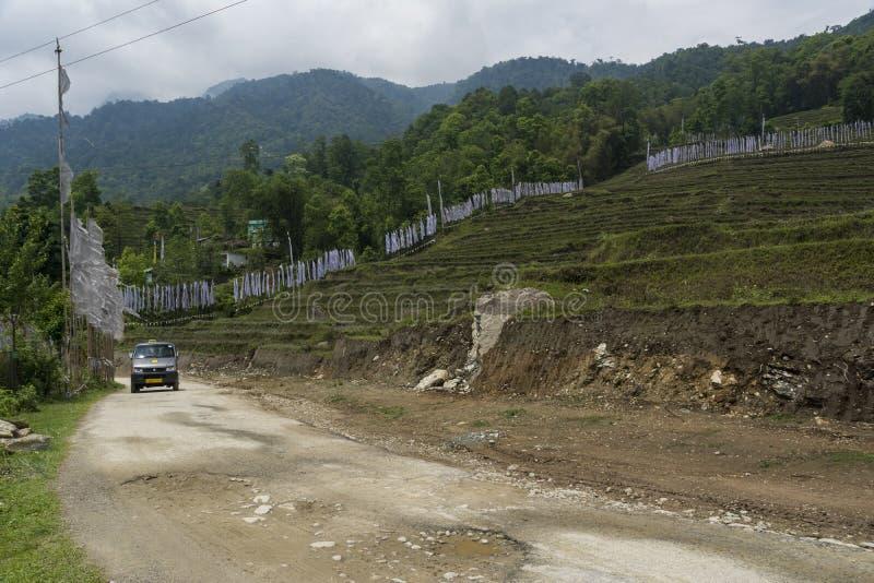 Maneira ao monastério de Rumtek perto de Gangtok, Sikkim, Índia fotografia de stock royalty free