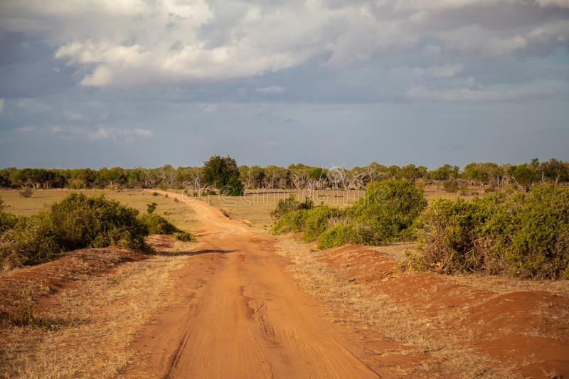 Maneira através do bushland foto de stock royalty free