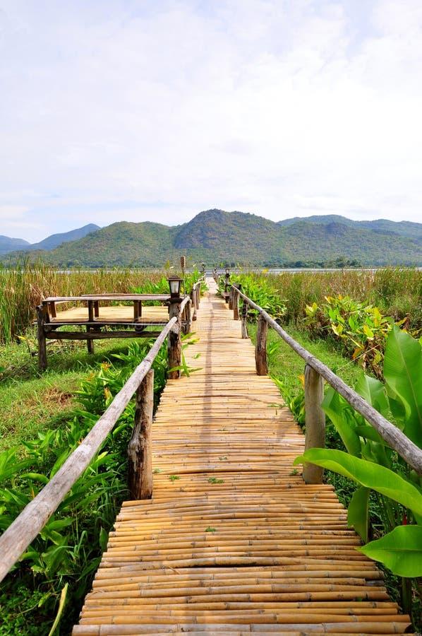 Maneira de bambu da caminhada imagens de stock