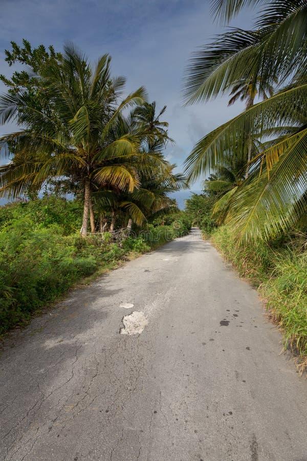 Maneira de estrada tropical da ilha imagens de stock