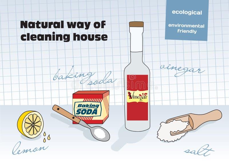 Maneira natural de limpeza ilustração royalty free