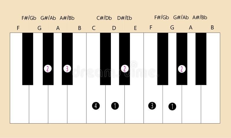 Manejo da escala principal do Ab para que o piano use-se com cada aplicação ilustração do vetor