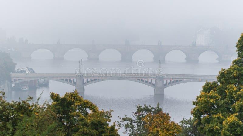 Manen en Charles-brug over Moldau-rivier in mist royalty-vrije stock fotografie