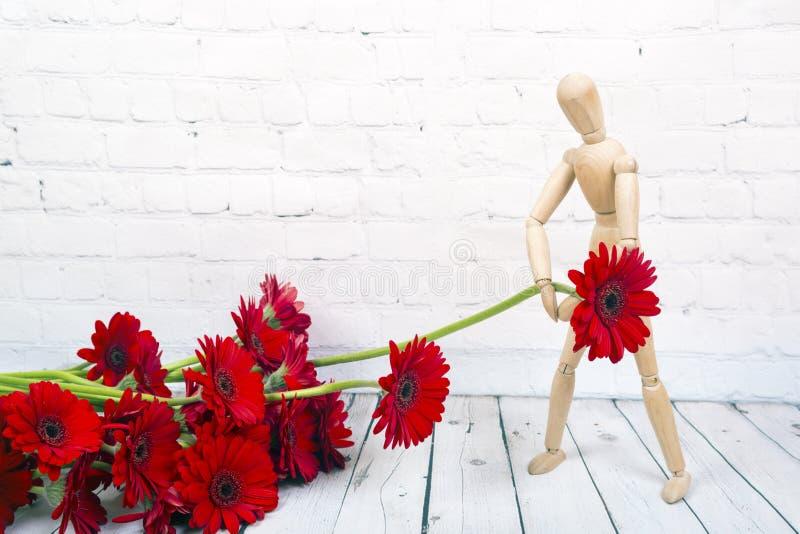 Manequim de madeira com a flor vermelha do gerbera imagens de stock