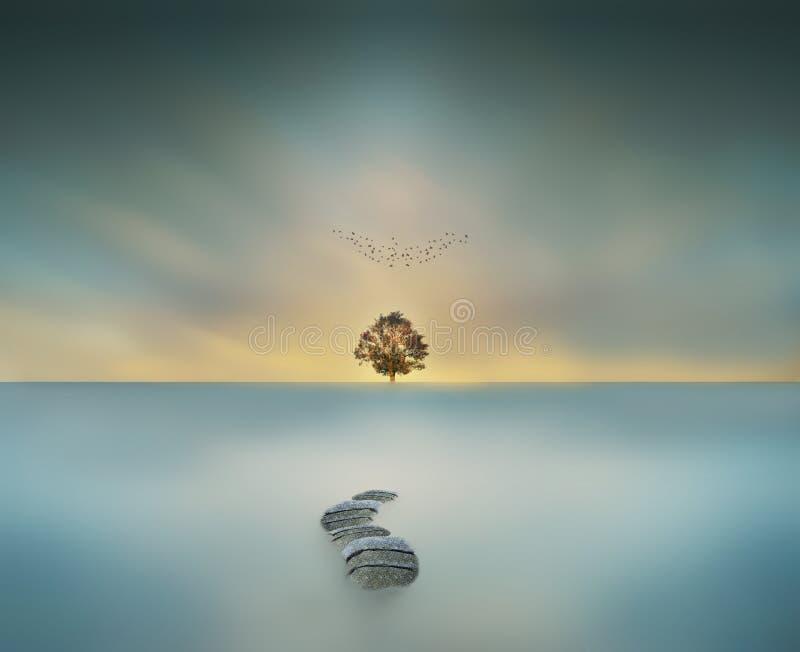 manera al árbol grande mágico del cielo en la exposición larga del waterscape imagenes de archivo