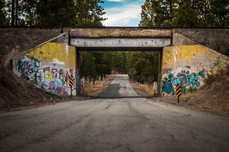 Manera de camino del puente del tren de la pintada fotos de archivo libres de regalías