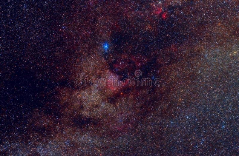 Manera lechosa en la constelación del Cygnus foto de archivo
