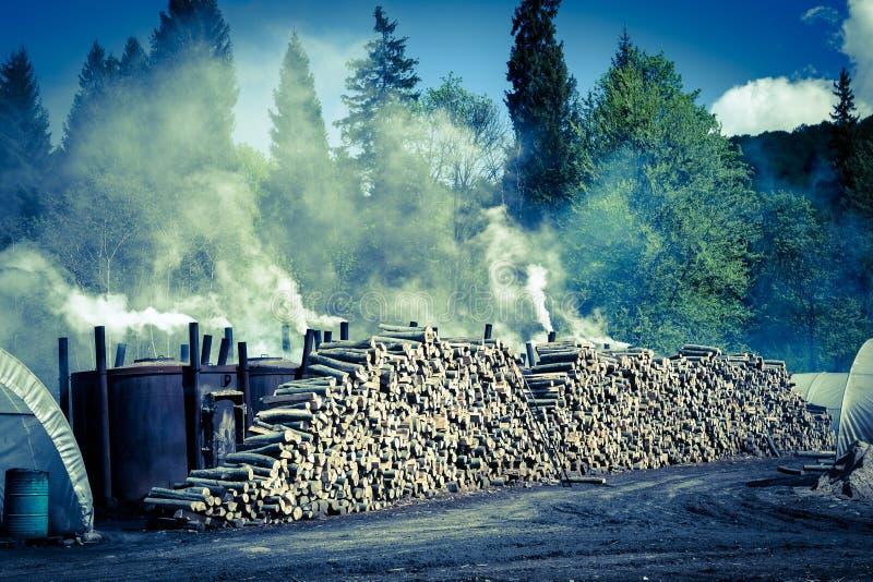 Manera tradicional de producción del carbón de leña foto de archivo