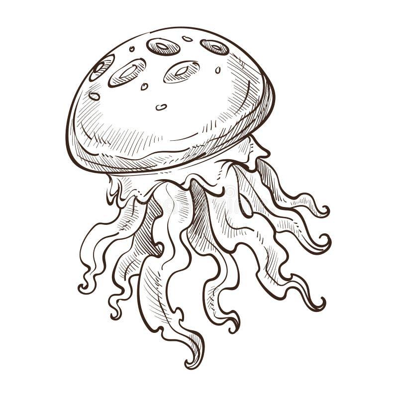 Manet isolerad marin- djur undervattens- varelse med tentakel vektor illustrationer