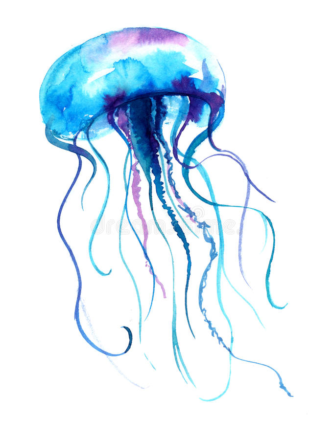 Manetvattenfärgillustration Medusamålning som isoleras på vit bakgrund, färgrik tatueringdesign royaltyfri illustrationer