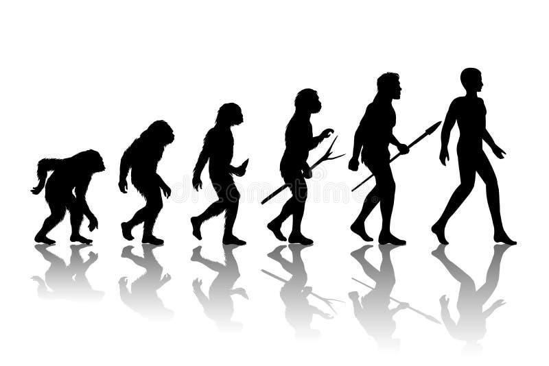 Manevolution vektor illustrationer