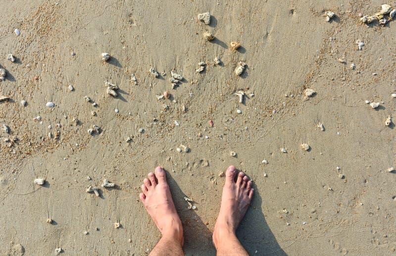 Manfot på sandstranden med en liten havsskal- och korallbakgrund arkivbilder