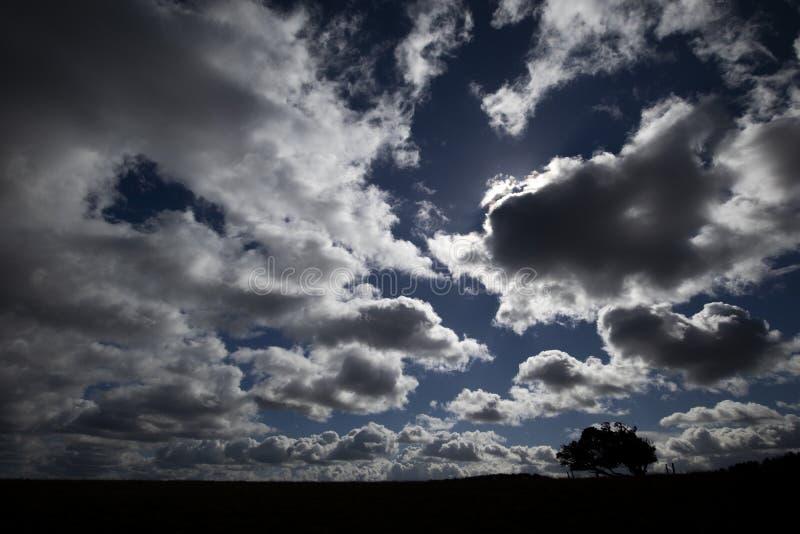 Manga de viento del campo de aviación fotografía de archivo libre de regalías