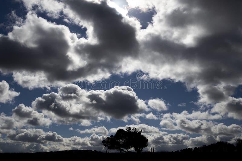 Manga de viento del campo de aviación foto de archivo libre de regalías