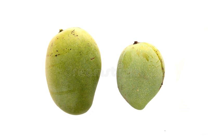 Manga do fruto imagens de stock royalty free