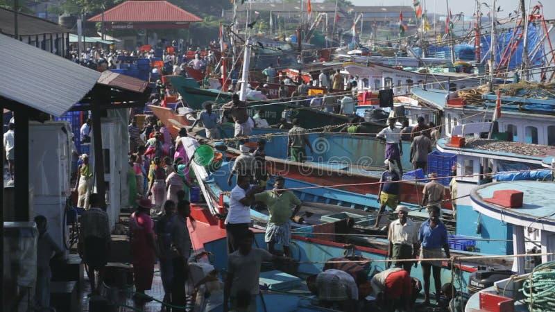 MANGALORE, ΙΝΔΙΑ -2011: Ψαράδες που μεταφέρουν την αλιεία από τη θάλασσα στα φορτηγά τον Οκτώβριο απόθεμα βίντεο
