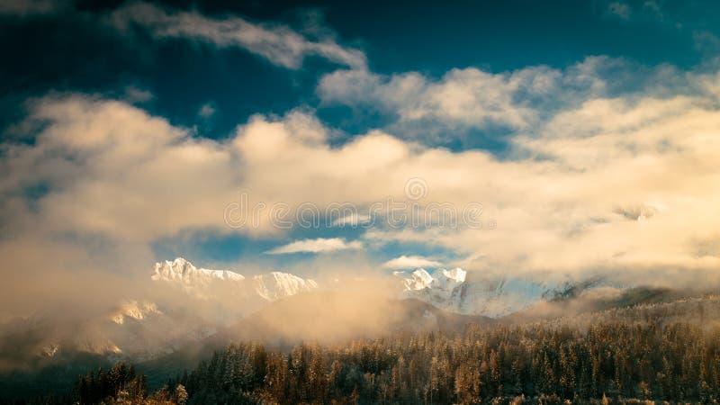 Mangart tampou pela névoa em um dia de inverno foto de stock royalty free