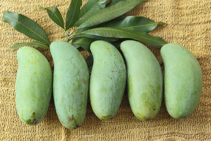 Manghi di Ekiiweswi immagine stock