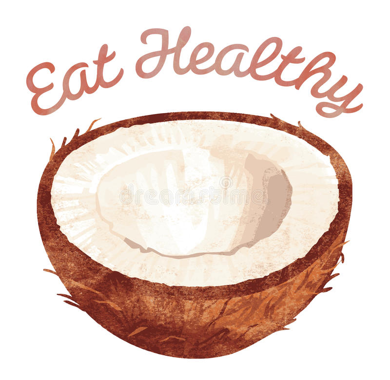 Mangi sano - noce di cocco illustrazione vettoriale