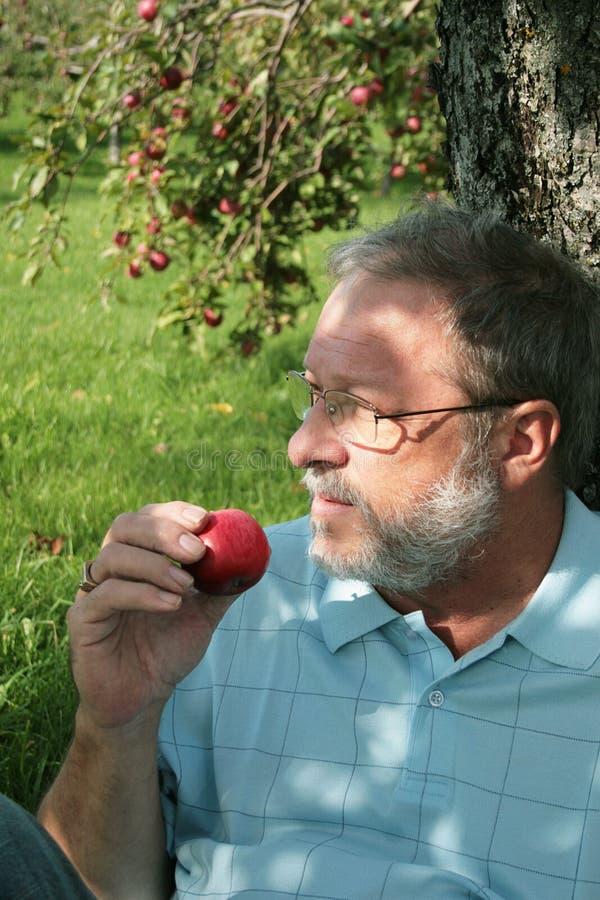 Mangi una mela fotografia stock
