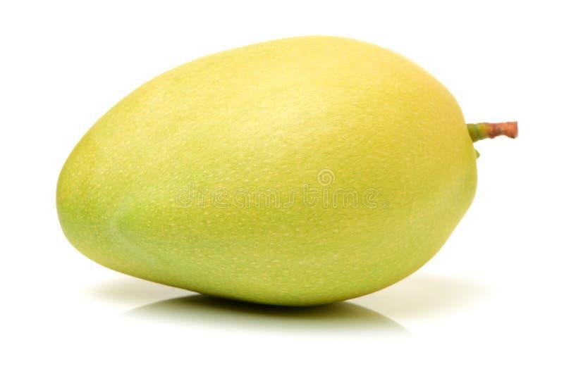 mango royaltyfri foto