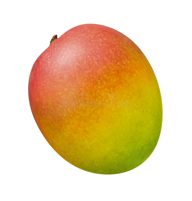 Mango. Isolated on a white background. Isolation is on a transparent layer in the PNG format stock images