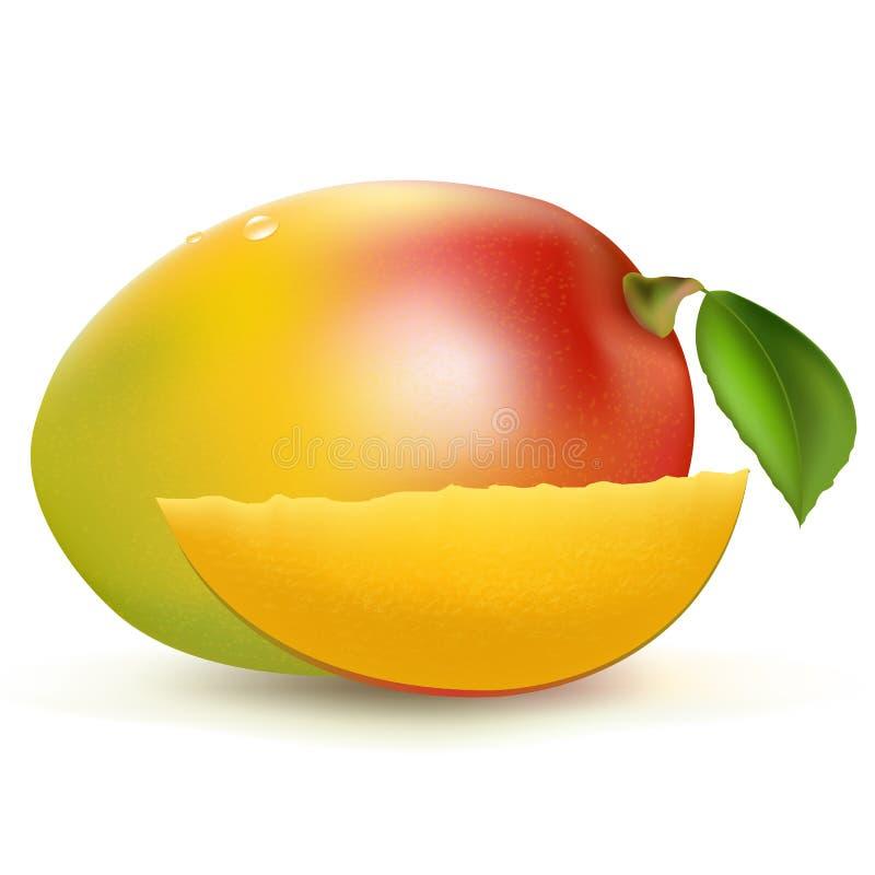 Mango. Isolated On White Background, Vector Illustration vector illustration