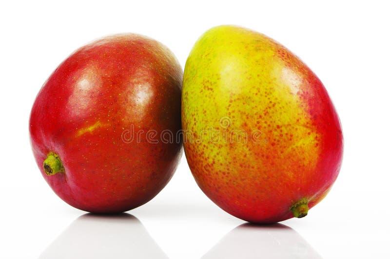Download Mango Stock Photos - Image: 24626093