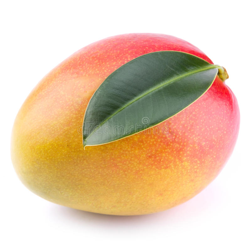Download Mango stock photo. Image of natural, pulp, yellow, tropical - 25430646