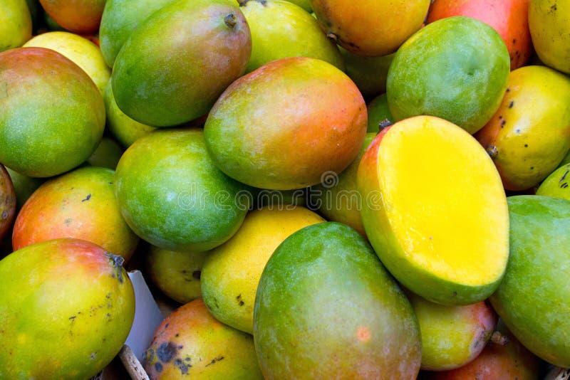 mango zdjęcie stock