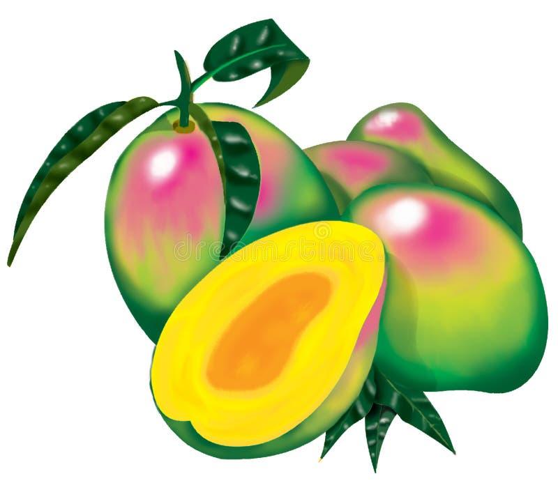 mango royalty ilustracja