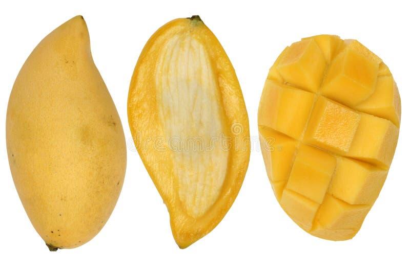 Download Mango stock photo. Image of mangifera, citrus, mango, served - 3761082
